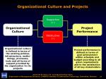 organizational culture and projects