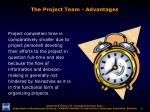 the project team advantages1