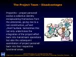 the project team disadvantages1