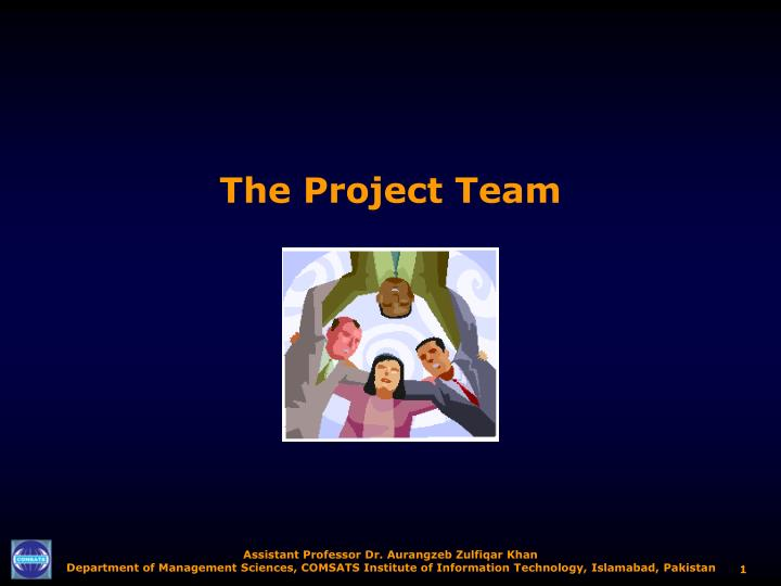 the project team n.
