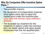 why do companies offer incentive option plans1