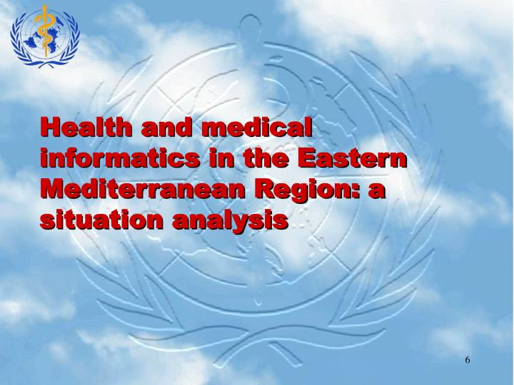 Health and medical informatics in the Eastern Mediterranean Region: a situation analysis