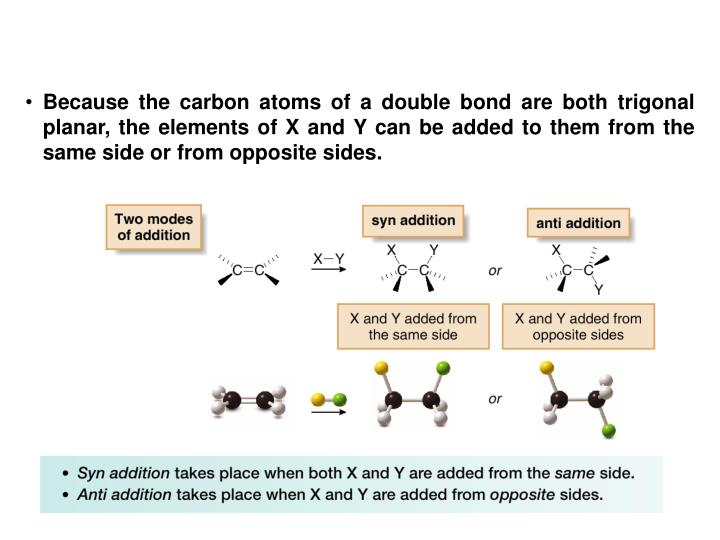 Because the carbon atoms of a double bond are both