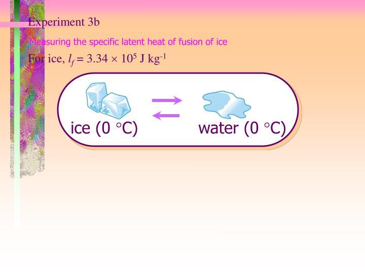 Experiment 3b