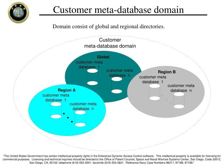 Customer meta-database domain