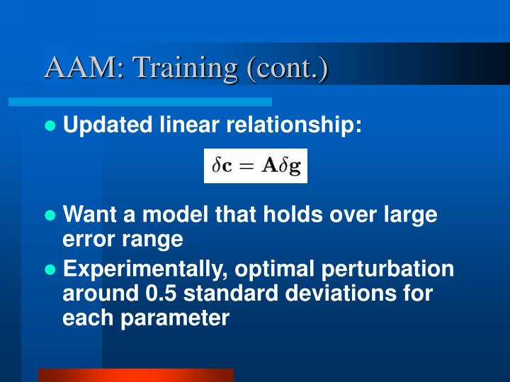 AAM: Training (cont.)