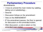 parliamentary procedure7