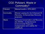 co2 pollutant waste or commodity