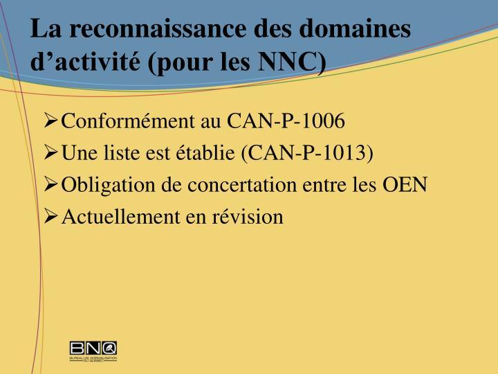 La reconnaissance des domaines d'activité (pour les NNC)