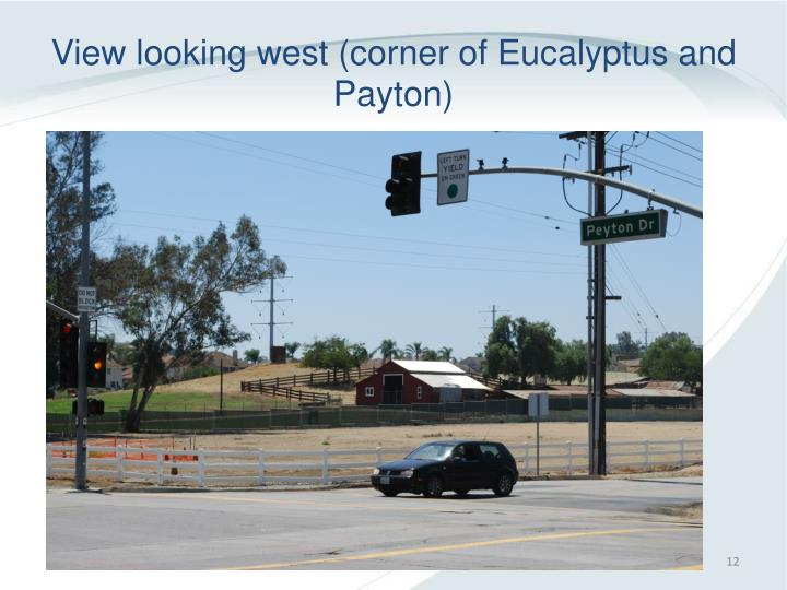 View looking west (corner of Eucalyptus and Payton)