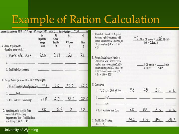 Example of Ration Calculation