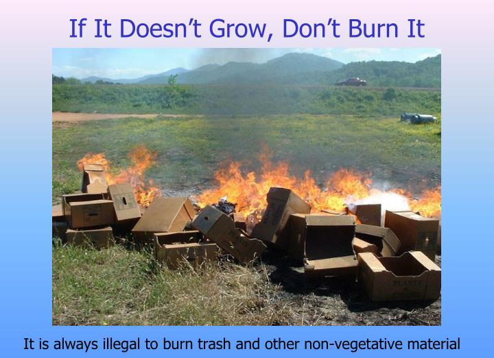 If It Doesn't Grow, Don't Burn It