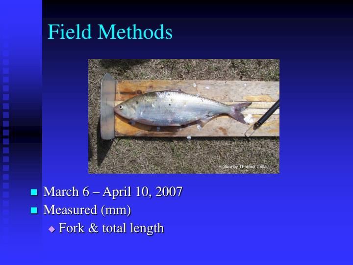 Field Methods