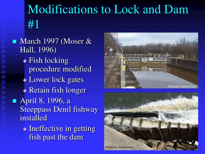 Modifications to Lock and Dam #1