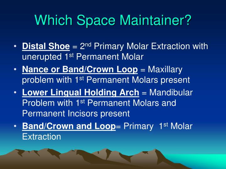 Which Space Maintainer?