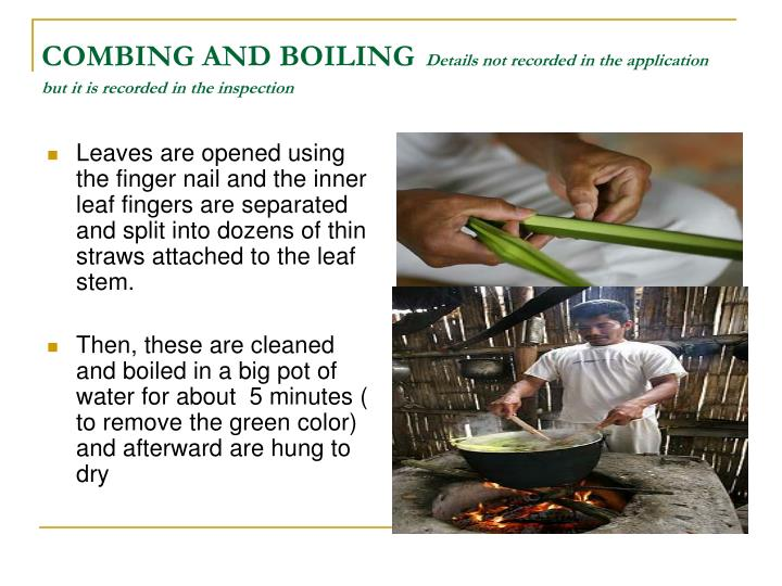 COMBING AND BOILING