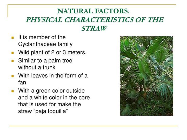 NATURAL FACTORS.