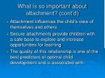 what is so important about attachment cont d