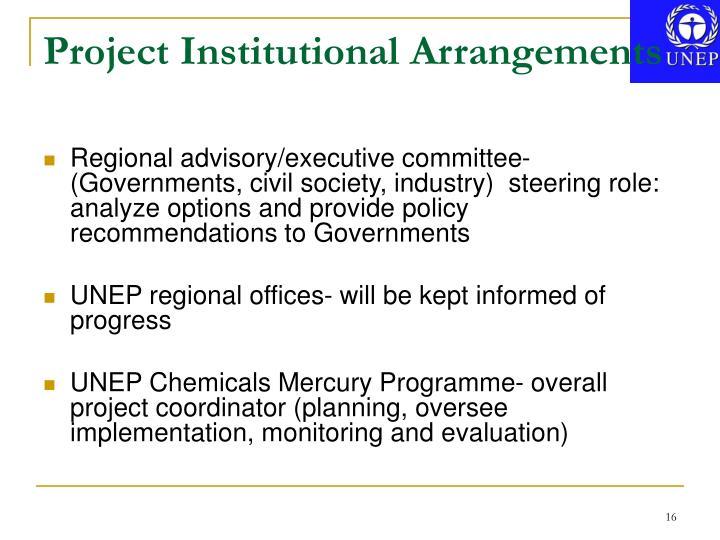 Project Institutional Arrangements