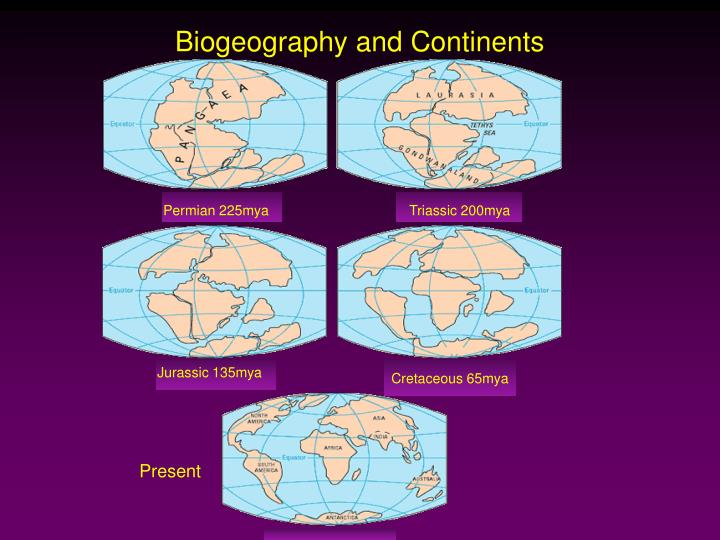 Biogeography and Continents