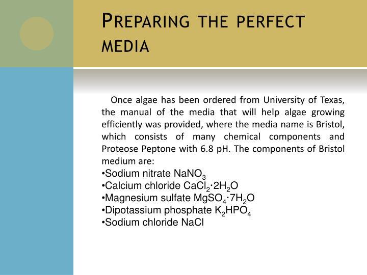 Preparing the perfect media