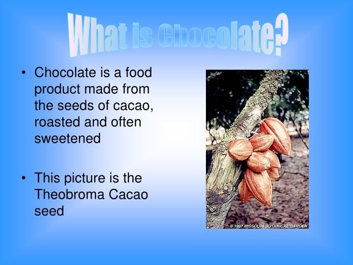 What is Chocolate?