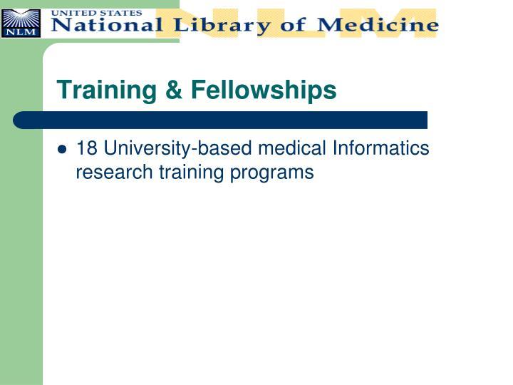 Training & Fellowships