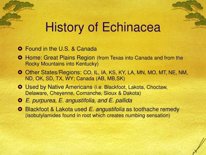 History of echinacea