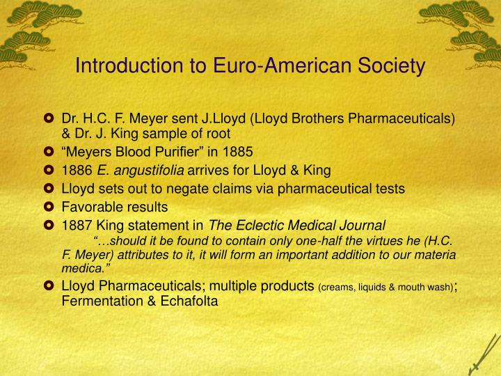 Introduction to Euro-American Society