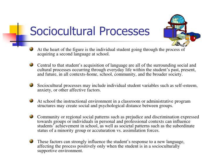 Sociocultural Processes