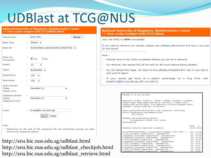 UDBlast at TCG@NUS
