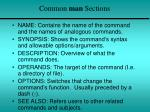 common man sections