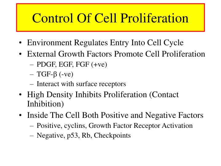 Control Of Cell Proliferation