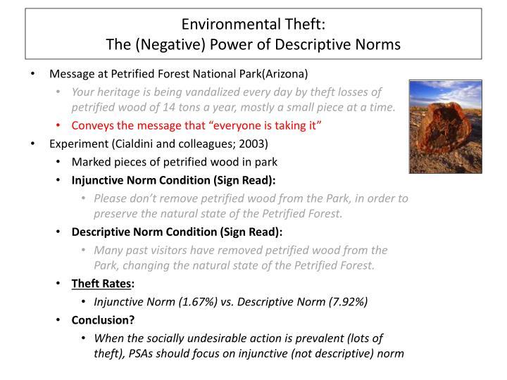 Environmental Theft: