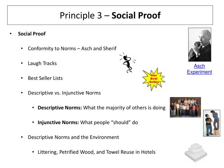 Principle 3 –