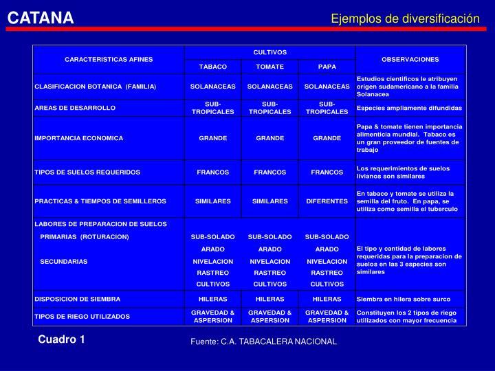 Ejemplos de diversificación