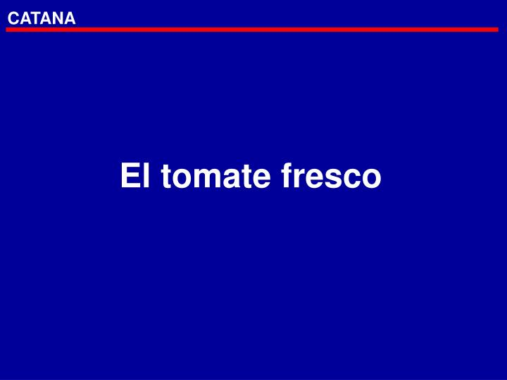 El tomate fresco