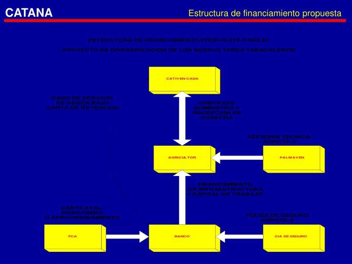 Estructura de financiamiento propuesta