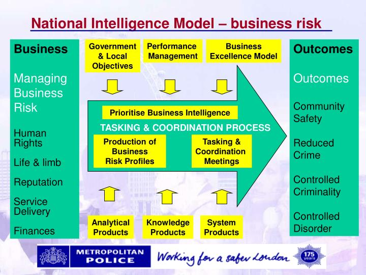 National Intelligence Model – business risk