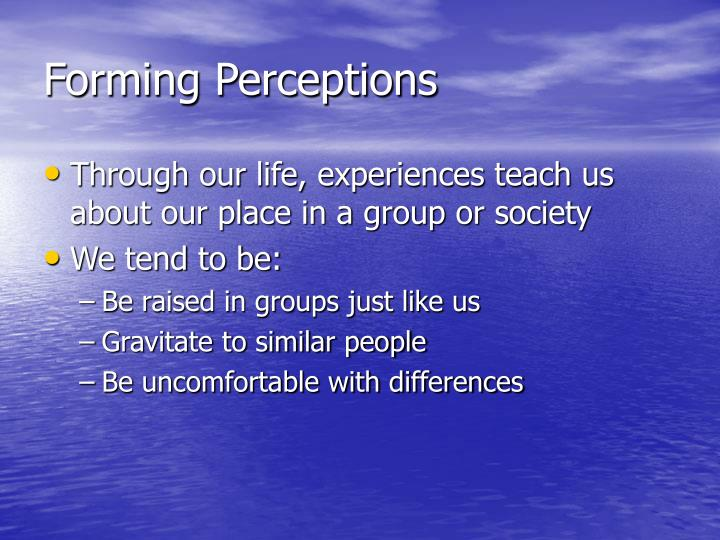 Forming Perceptions