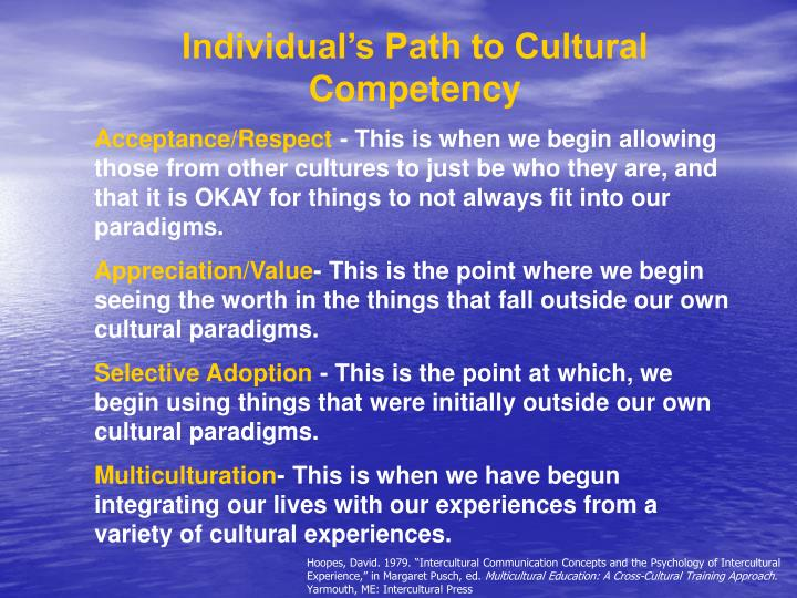 Individual's Path to Cultural Competency