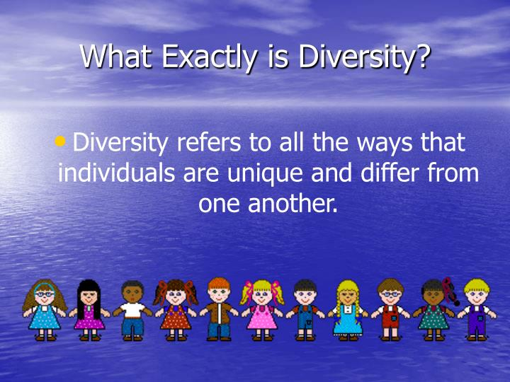 What Exactly is Diversity?