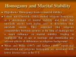 homogamy and marital stability