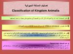 classification of kingdom animalia