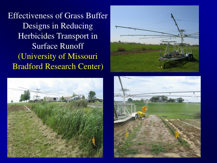 Effectiveness of Grass Buffer Designs in Reducing Herbicides Transport in Surface Runoff