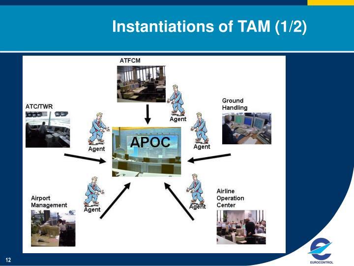 Instantiations of TAM (1/2)