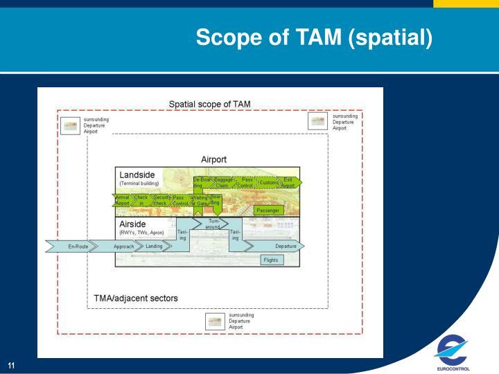 Scope of TAM (spatial)