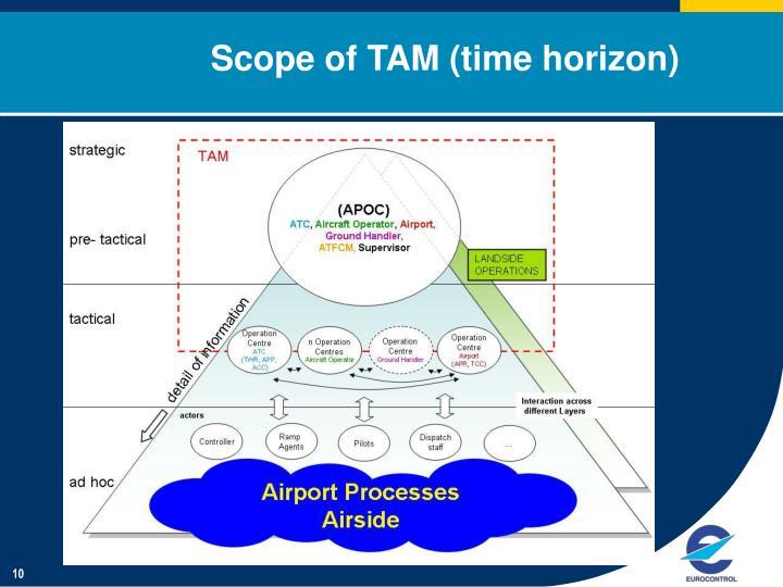 Scope of TAM (time horizon)