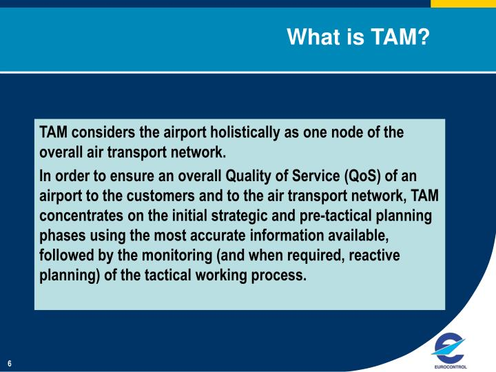 What is TAM?