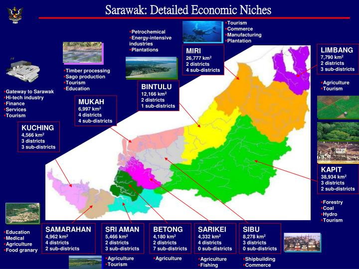Sarawak: Detailed Economic Niches